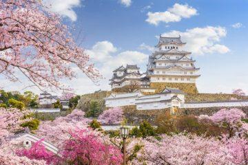 เที่ยวที่เที่ยวญี่ปุ่น